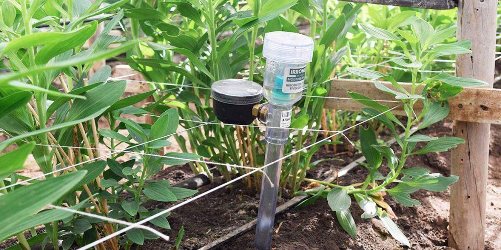 Decisión – Pilar 4 de Eficiencia Hídrica Agrícola