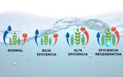 Conoce nuestros 3 niveles de eficiencia hídrica agrícola