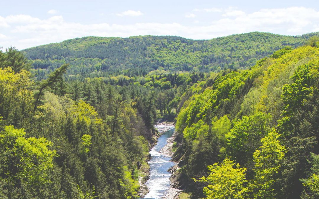 Eficiencia hídrica regenerativa en la Cuenca del río Aconcagua (2/2)